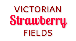 Victorian Strawberry Fields